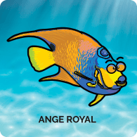 Ange Royal